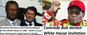 No Mugabe, No Summit